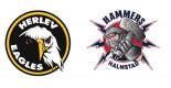 Træningskamp - Herlev Eagles vs Halmstad